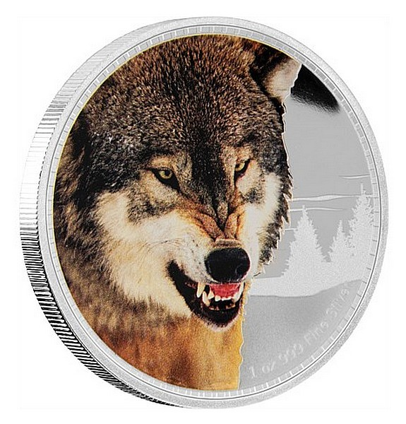1 oz Ag stříbrná mince Kings Of The Continents - Grey Wolf VLK ŠEDÝ