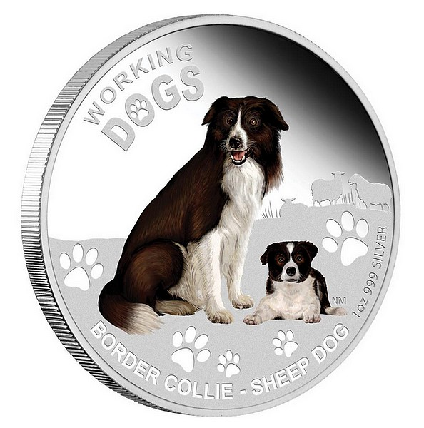1 oz Ag stříbrná mince Working Dogs Border Collie BORDER KOLIE